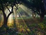 നവാഡ- അത്ഭുതങ്ങളൊളിപ്പിച്ചിരിക്കുന്ന ഗ്രാമം