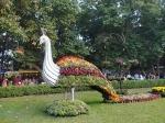 ഉദ്യാനനഗരിയെ സുന്ദരിയാക്കുവാൻ ലാൽബാഗ് റിപ്പബ്ലിക് ഡേ ഫ്ലവർ ഷോ
