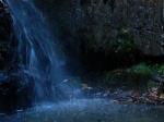 ഹിമാചല് പ്രദേശിലെ ഷോജ, കണ്ടുതീര്ക്കുവാന് ബാക്കിയായ നാട്