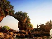 നീല്ദ്വീപിലെ അതിശയിപ്പിക്കുന്ന കോറല് ബ്രിഡ്ജ്