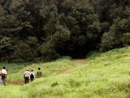 ചിക്കമഗളൂരിലെ ഭദ്ര വന്യജീവി സങ്കേതം