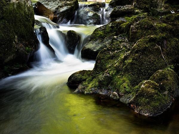 Karingappara Parammal Falls in Malappuram,