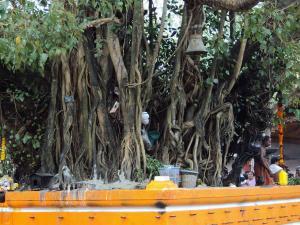 Visit Oachira Temple 000355 Pg