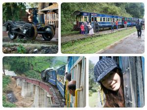 Ooty Tour Nilgiri Mountain Railway