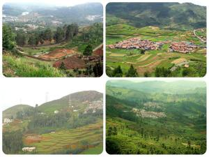 Top 7 Hill Stations Tamil Nadu