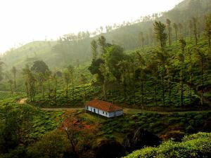 Top 15 Hill Stations South India Your Summer Vacation