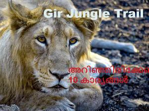 Things Know About Gir Jungle Trail