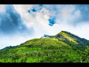 Chembra Peak Travel Guide