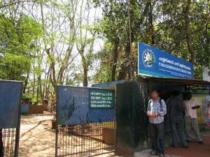 Visit Parassinikadavu Snake Park Kannur