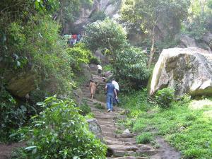 A Winter Trip Edakkal Caves