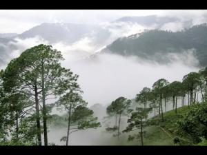 Lambasingi Kashmir South India