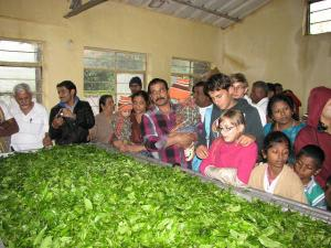 Visit Munnar Tea Museum