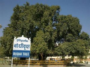 Reasons Visit Nagpur