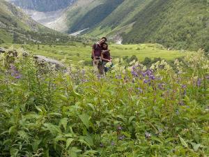 Valley Flowers Trek