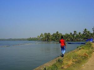 Kumabalangi Village Kochi
