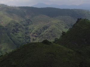 Panchalimedu Hill Station In Idukki Kerala
