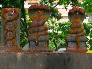 Mannarasala Sree Nagaraja Temple Haripad Alappuzha