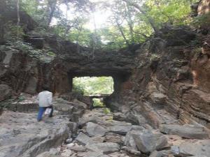 Nallamala Forest The Mysterious Forest Andra Pradesh