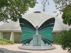 Butterfly Parks India
