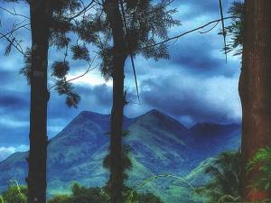 Scenic Neelimala Viewpoint In Wayanad
