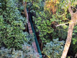 First Canopy Walk In India