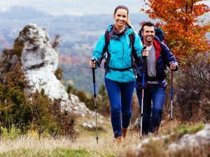 Tips Trekking Forest