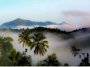 Must Visit Offbeat Hill Stations Kerala