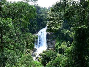 Visit These Beautiful Waterfalls In Gujarat