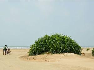 Kolkata Tajpur Indulge The Atmosphere Clean Beaches Malayalam
