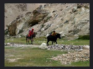Reasons Visit Dras In Jammu Kashmir