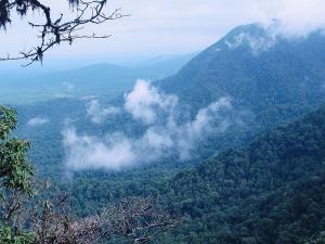 Monsoon Destinations Around Mangalore