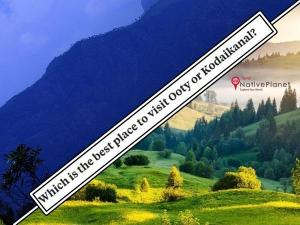 Ooty Or Kodaikanal Which Is The Best Destination For Travelers