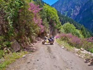 Kishtwar Tourist Attractions Places Visit And Sightseeing