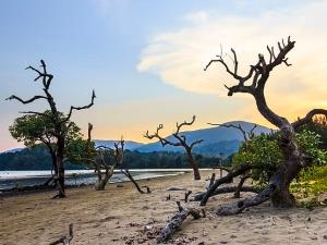 Top Six National Parks In Andaman