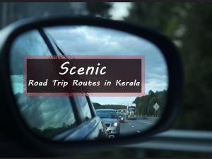 Scenic Road Trip Roads In Kerala