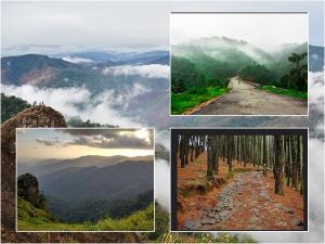 Top Places Visit Around Vagamon