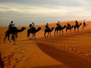 Things That Traveller Can Experience Rajasthan