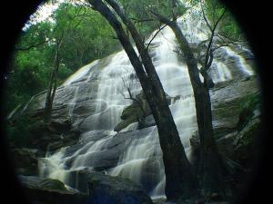 Best Places To Visit In Yercaud Things To To Do And Sightseeing