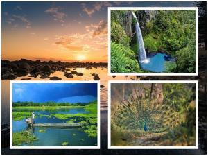 Most Beautiful Places To Visit In Assam