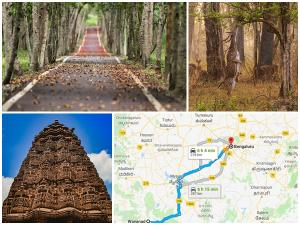 Best Routes From Wayanad To Bangalore