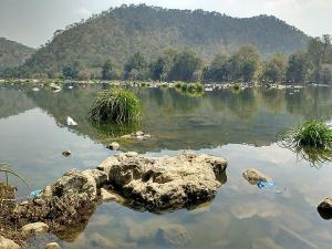 Cauvery Wildlife Sanctuary In Karnataka Specialities Timings And How To Reach
