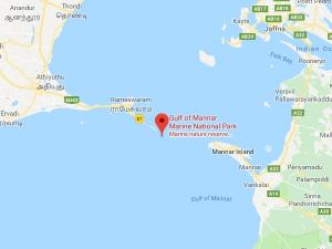 Gulf Of Mannar Marine National Park In Tamil Nadu Attractions And How To Reach