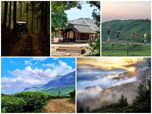 Amazing Places To Visit In Kerala This December