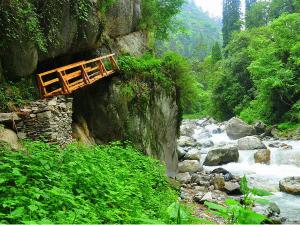 Shoja In Himachal Pradesh Attractions Things To Do How To Reach