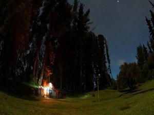 General Tips For Night Trekking