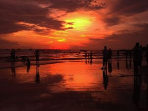 Baga Beach In Goa Attractions Things To Do And How To Reach