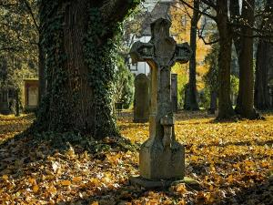 South Park Street Cemetery In Kolkata Hisory Attractions How To Reach