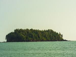 Top Places To Visit Near Payyambalam Beach Kannur