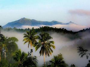 Best Places In Kerala For A Short Trip