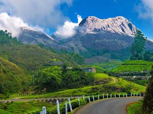 Best Places To Vist In Munnar This January 2020